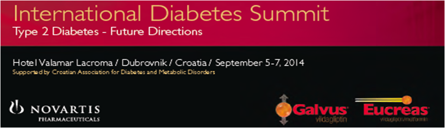International Diabetes Summit Type 2 Diabetes – Future Directions